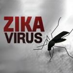 ZIKA Virus and Mosquito