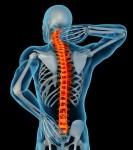 anatomy-showing-back-pain